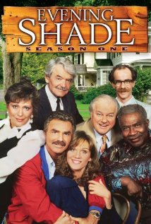 Watch Evening Shade Online